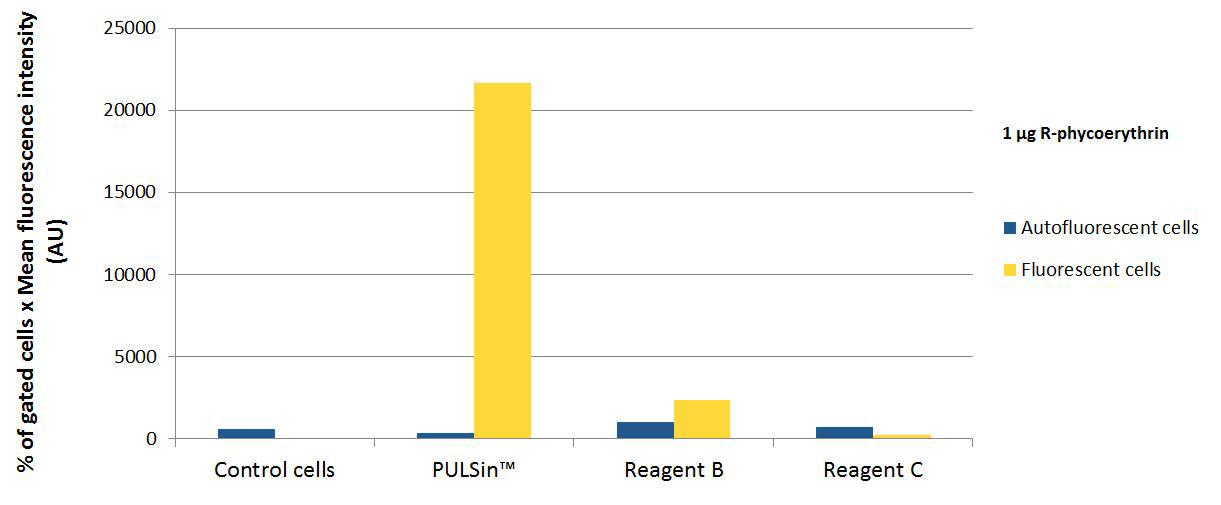 PULSin - Comparison fluorescence R-phycoerythrin