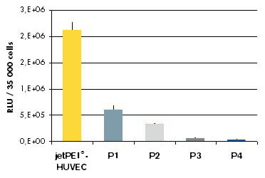 jetPEI-HUVEC - comparison transfection efficiency