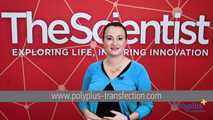 Polyplus-transfection - Trends in Transfection
