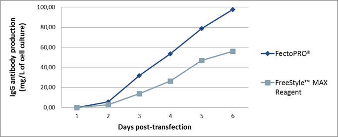 FectoPRO - antibody yields CHO cells