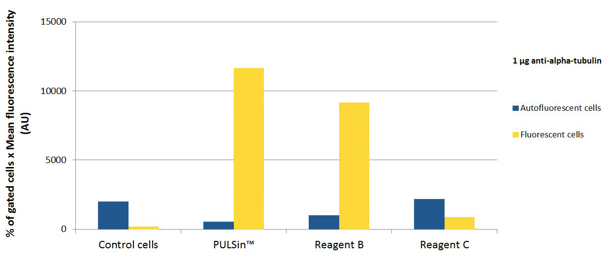 PULSin - Comparison fluorescence anti-alpha-tubulin