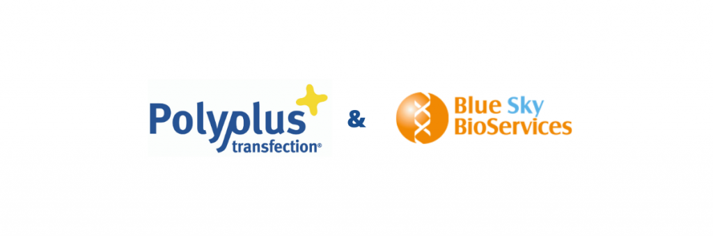 Polyplus-transfection and Bio Sky Bioservices