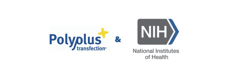 Polyplus-transfection and NIH