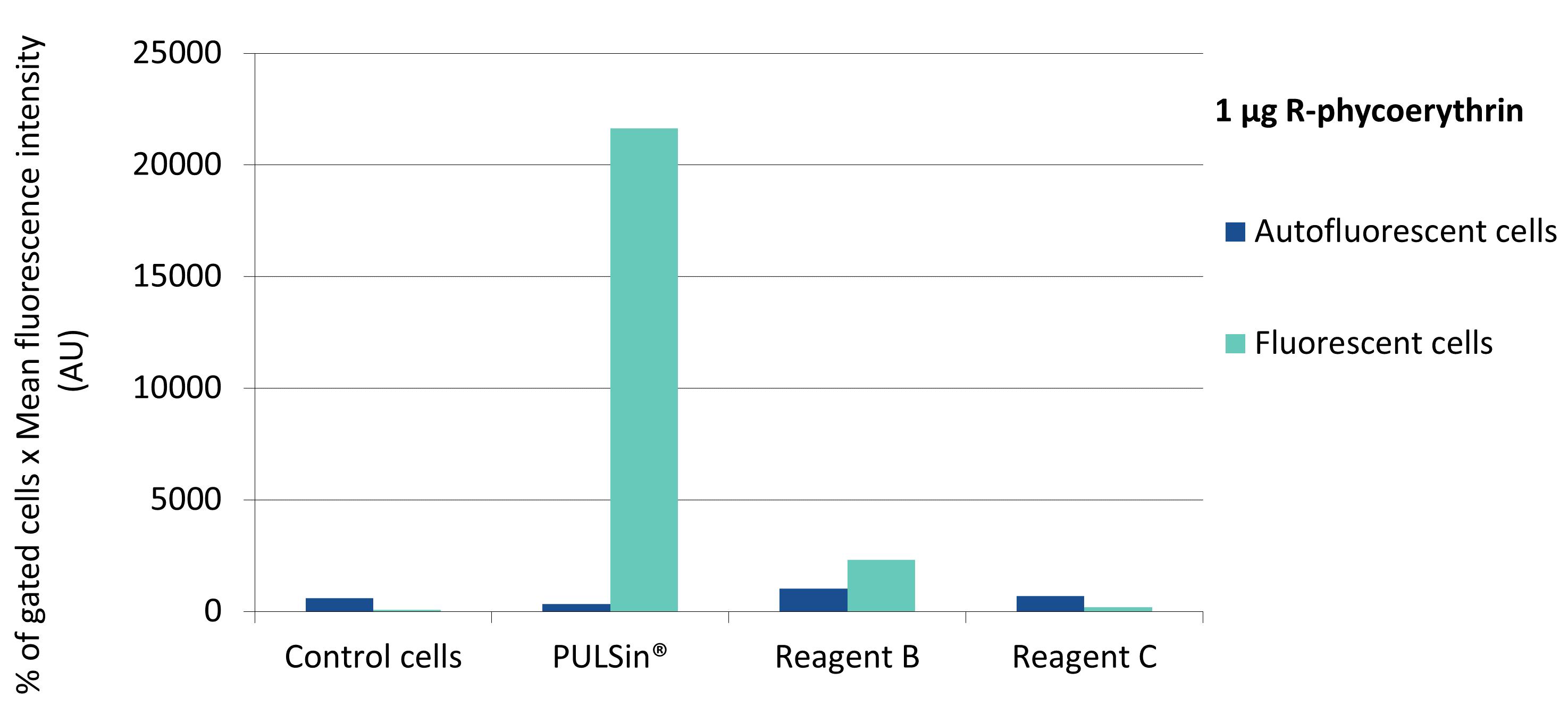 PULSin - Efficiency R-phycoerythrin