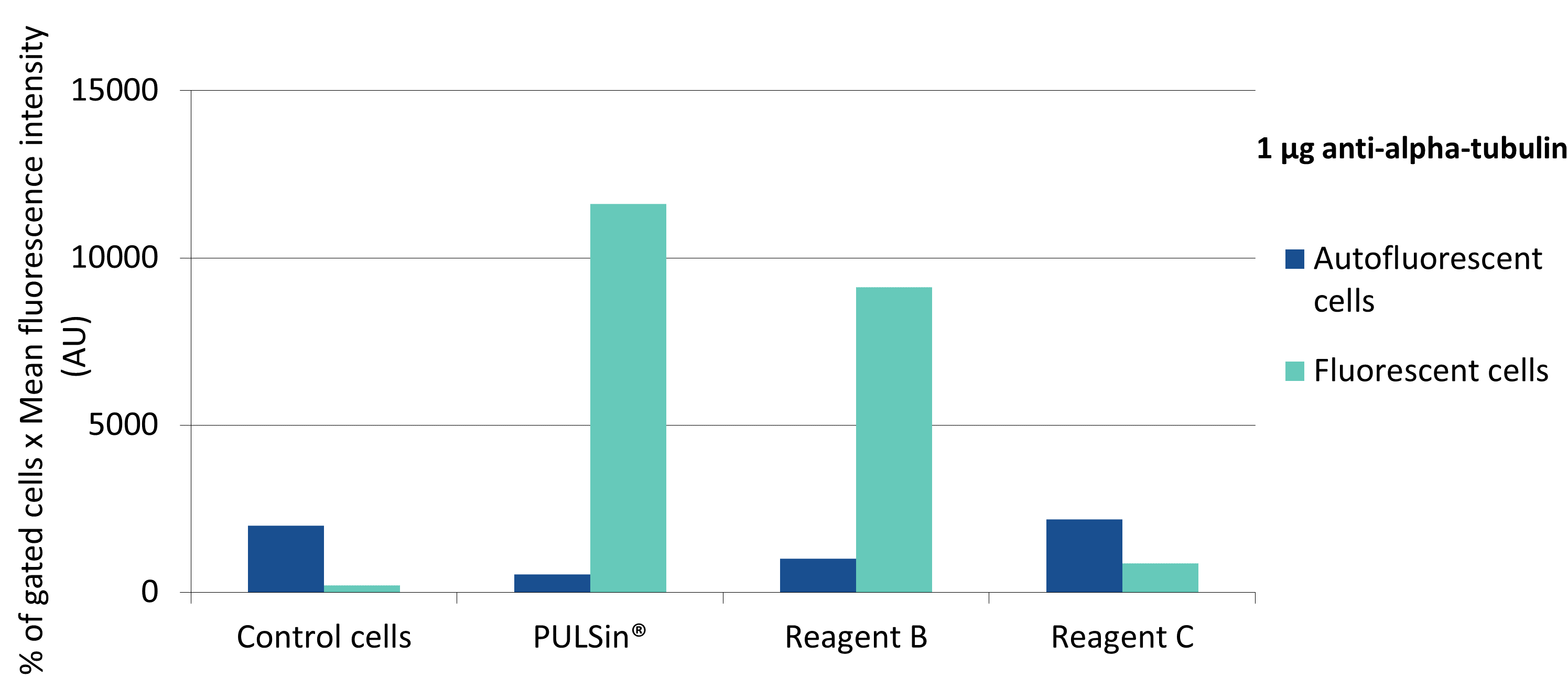 PULSin - Efficiency anti-alpha-tubulin