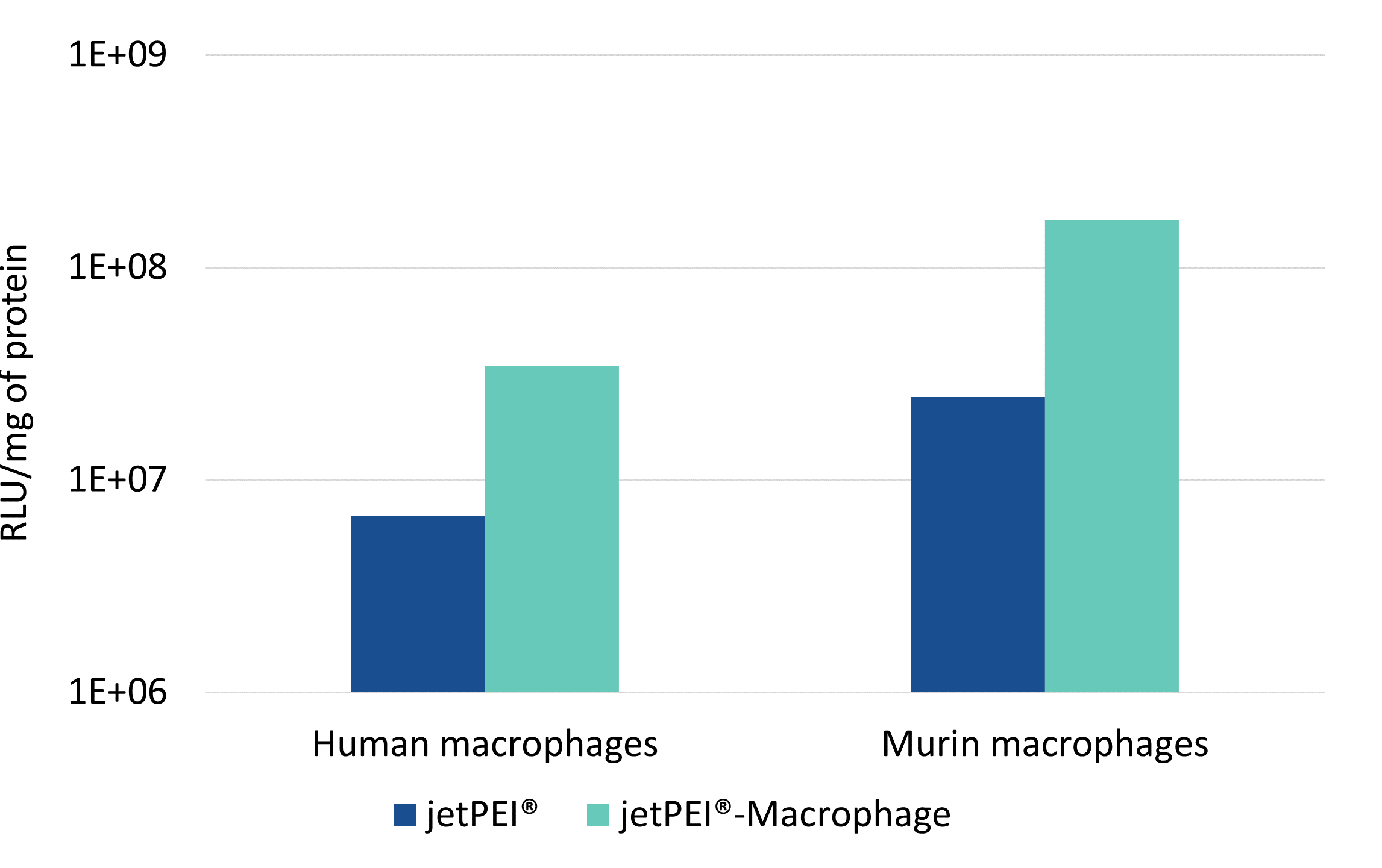 jetPEI-Macrophage - comparison jetPEI