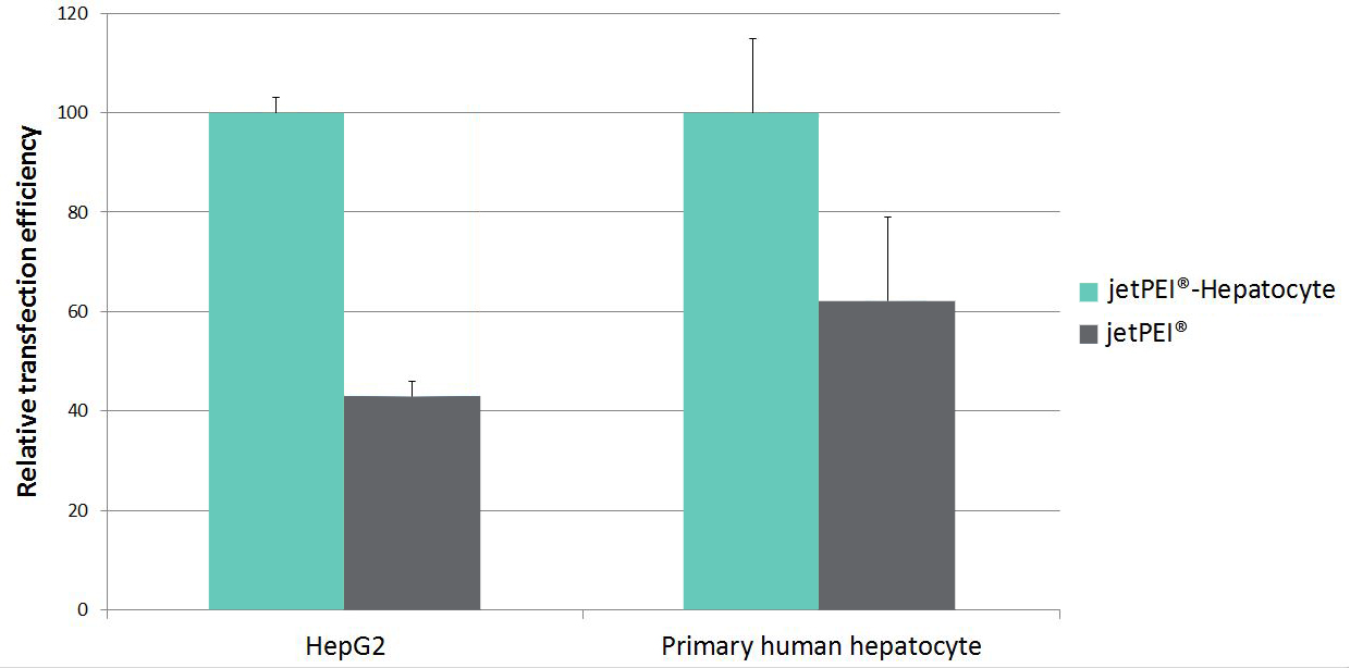 jetPEI-Hepatocyte - Comparison jetPEI