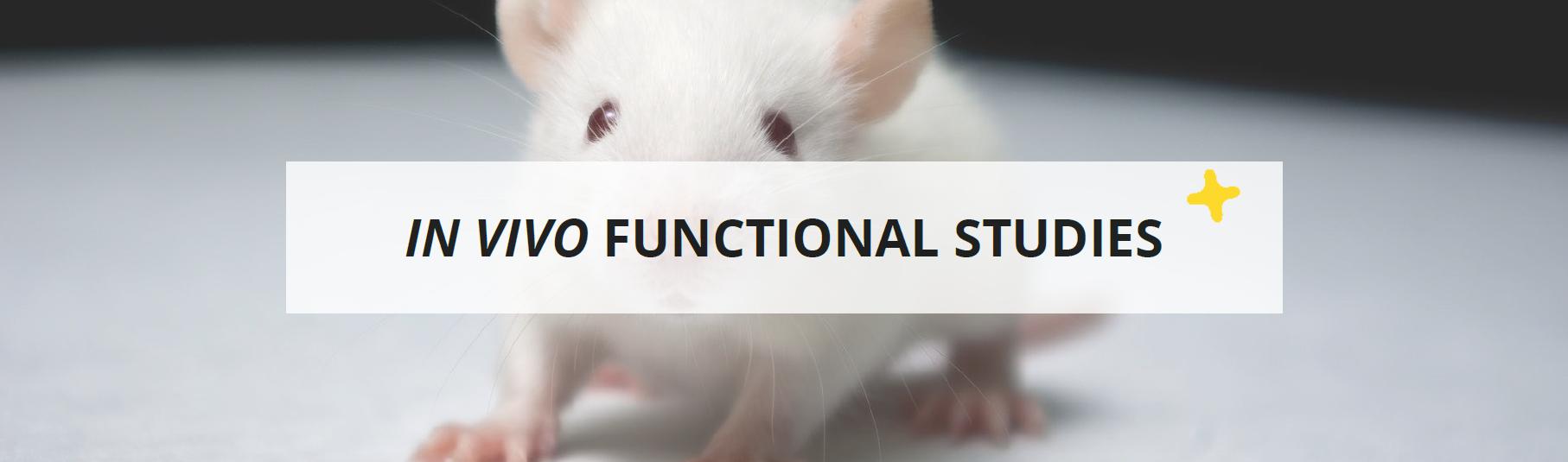 in vivo functional studies