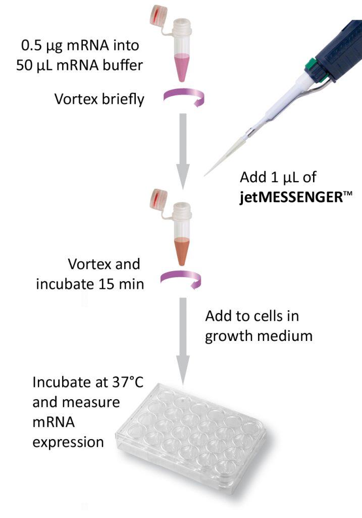 jetMESSENGER - Protocol