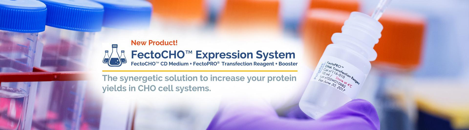 FectoCHO Expression System - New Product - Polyplus-transfection