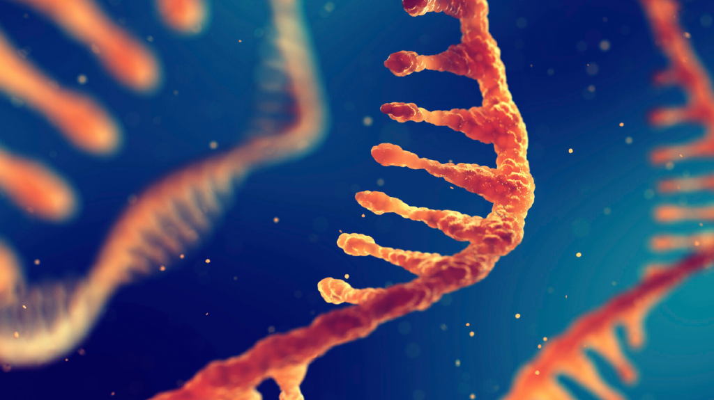 mRNA banner blog