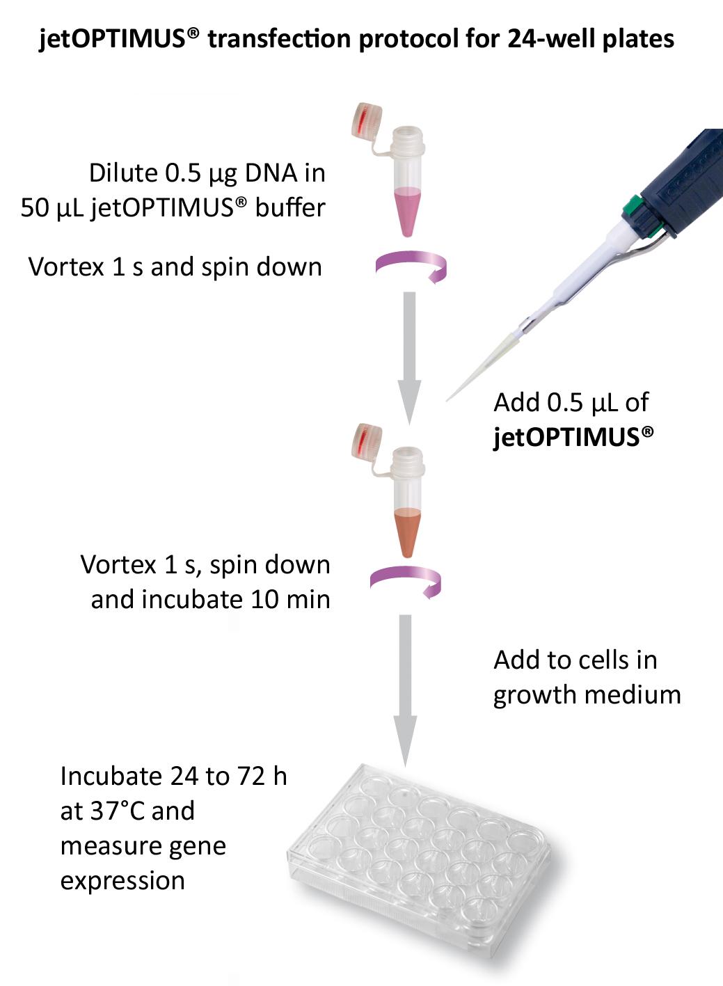 jetOPTIMUS - Protocol