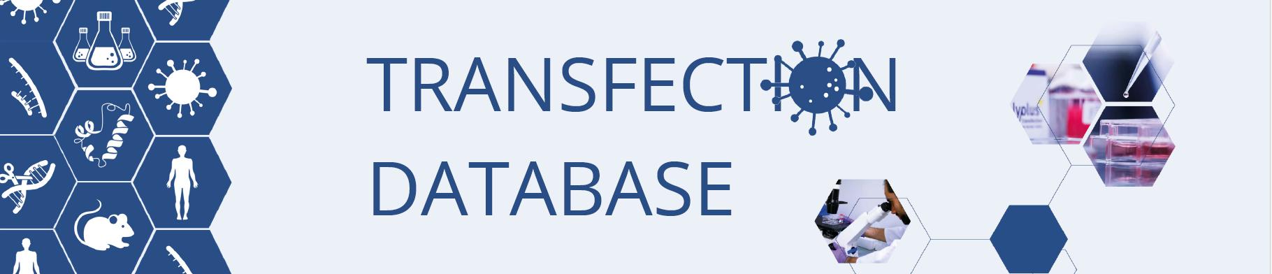 transfection database