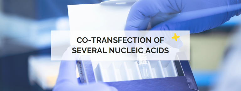 co-transfection of several nucleic acids
