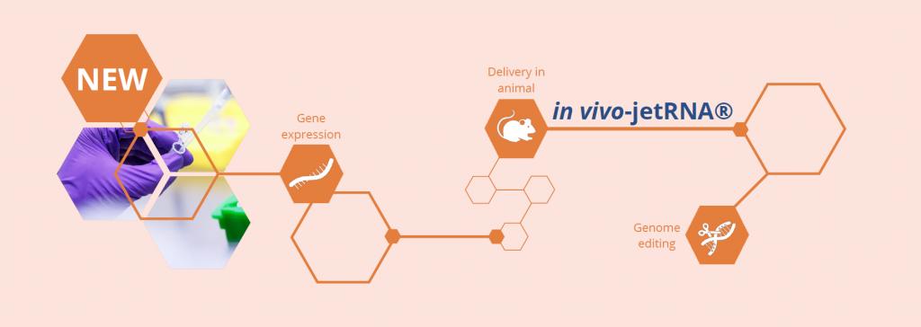 in vivo-jetRNA - product banner