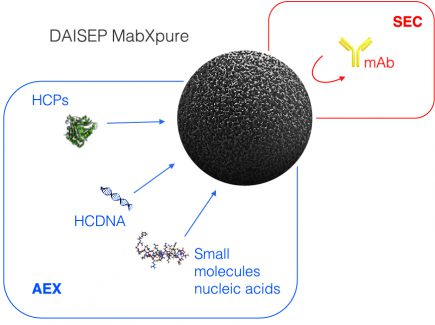 Figure 1: Multimodal depletion mechanisms of DAISEP MabXpure™.